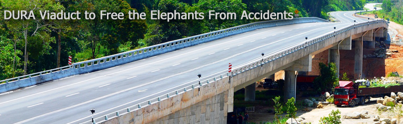 DURA Viaduct to Free the Elephants From Accidents